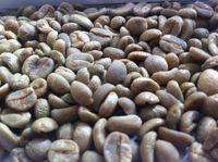 Arabica Fine Cup Mogiana -