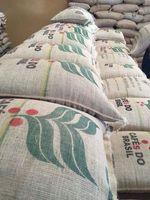 Green Coffee Beans -