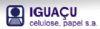 Iguaçu Celulose Papel S/a