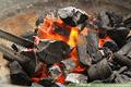 Carvão de madeira - Produtos de Energia
