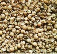 Cascas de soja para a alimentação animal -