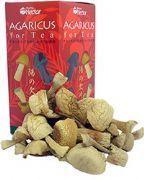 Agaricus blazei Murril - O Cogumelo surpreendente brasileira -