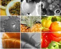 Frutas em pó - Frutas tropicais nativas! -