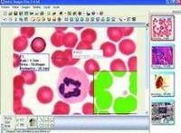 Softwares científicos: Educação, Biológicas e Industrial. -