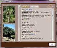 CalcLandscape software para cálculo de orçamento de projeto de paisagismo e irrigação -