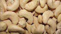 Salgados castanha de caju 100g (OBM, ODM, & OEM) -