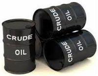 óleo cru -