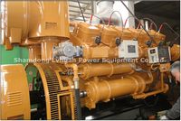 Grandes biogás projeto digestor gerador de biogás preços 1MW biogás gerador elétrico -