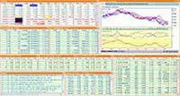 Serviços De Dados Financeiros Para Os Investidores Individuais E Investidores Institucionais -