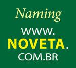 Nomeação Para Os Mercados Brasileiro E Sa -